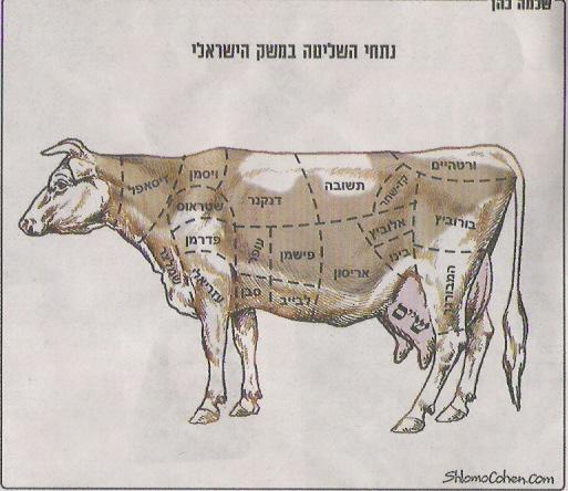 נתחי השליטה במשק הישראלי